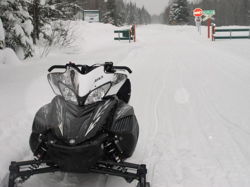 sleds 910.jpg